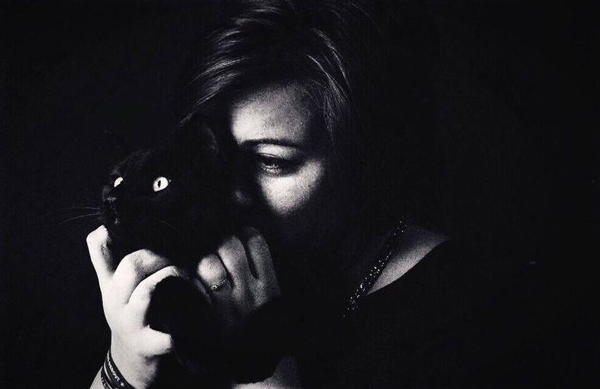 Monsieur Jules. Chat Chat Noir Noir Et Blanc Lucileaphotographie