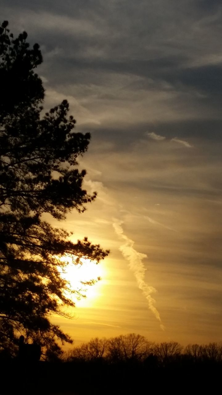 sunset, nature, scenics, tree, beauty in nature, sky, tranquil scene, cloud - sky, silhouette, no people, tranquility, outdoors, field, growth, day, vapor trail