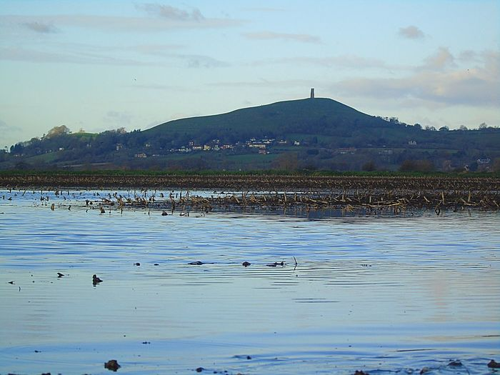 Mountain Water Sky Nature Beauty In Nature Large Group Of Animals Bird Scenics Outdoors Animals In The Wild Lake No People Animal Themes Cloud - Sky Day Tranquility Glastonbury Tor Flooding
