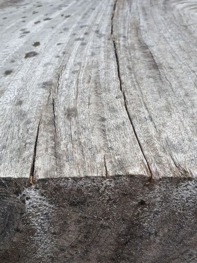 Decayed Beauty Wood Aged Beauty Wooden Wooden Texture