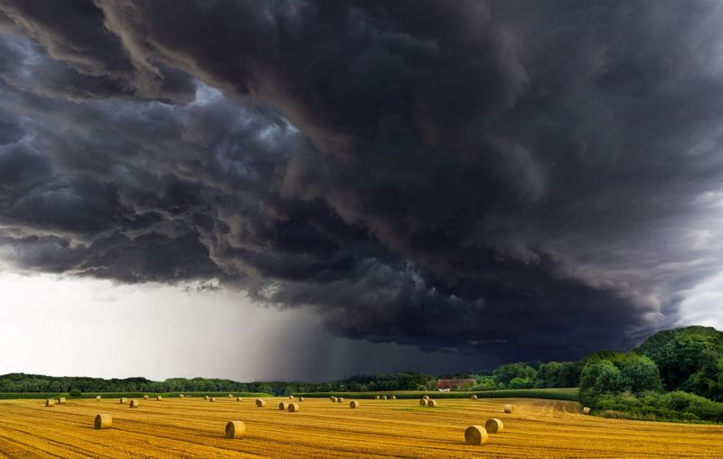 Agriculture Beauty In Nature Cloud - Sky Dramatic Sky Environment Field Land Landscape Nature No People Ominous Outdoors Overcast Plant Power In Nature Rain Rolling Landscape Rural Scene Scenics - Nature Sky Storm Storm Cloud Thunderstorm Torrential Rain Tree