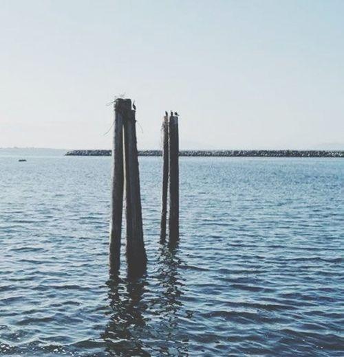 Enjoying Life Sea And Sky Bestifuls