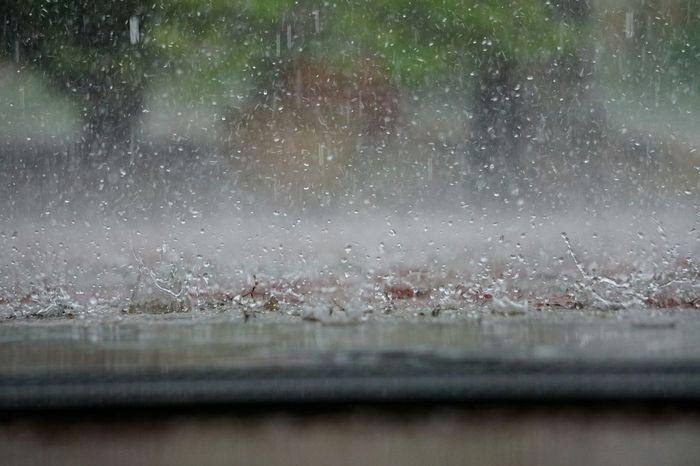 Nature Water Drop Rainy Days RainDrop Raindropshot Cold Wet Sleep