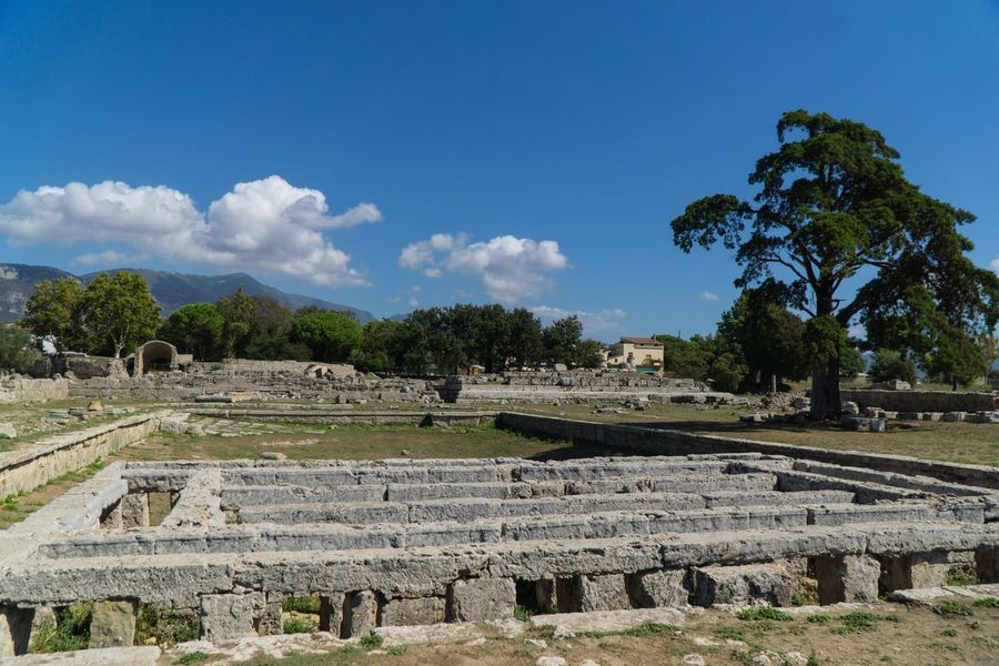 Roman baths at Paestum Roman ruins, Italy Temple Tree Plant Sky History Architecture The Past Cloud - Sky Ancient No People Day Sunlight Building Exterior Tranquility Nature Built Structure Blue Growth Travel Destinations Old Ruin Outdoors Adventures In The City