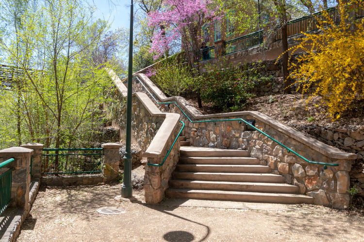 New Mexico Architecture Beauty In Nature Built Structure Day Direction Empty Forest Growth Nature No People Outdoors Plant Railing Silver City, New Mexico Solid Staircase Steps And Staircases Sunlight The Way Forward Tranquility Tree