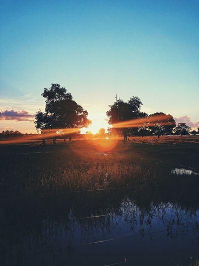 #sol #fazenda #vidacountry