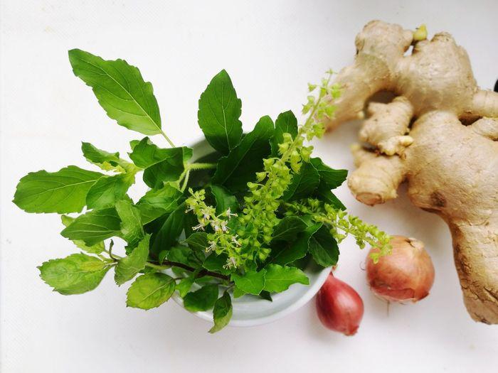 herbal Herb
