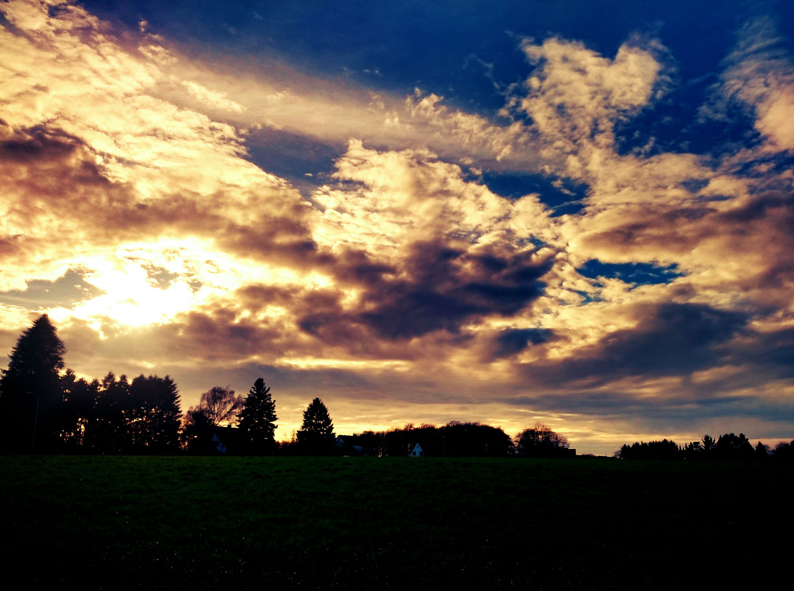 sky, tranquil scene, landscape, sunset, tranquility, field, tree, cloud - sky, scenics, beauty in nature, silhouette, grass, nature, cloudy, cloud, idyllic, dramatic sky, growth, grassy, non-urban scene