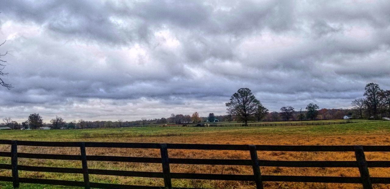 cloud - sky, sky, landscape, plant, environment, nature, tree, field, land, no people, barrier, fence, day, overcast, tranquil scene, beauty in nature, boundary, tranquility, rural scene, outdoors, ominous