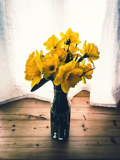 Close-up of yellow flower vase on wooden floor at home