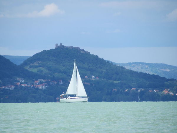 Balaton - Hungary Beauty In Nature Day Mountain Nature Nautical Vessel No People Outdoors Sailboat Sailing Sailing Ship Scenics Sea Sky Tranquil Scene Tranquility Transportation Tree Water Waterfront Yacht Yachting EyeEm Selects Boat Sailor