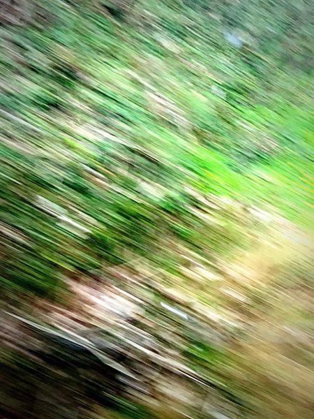 Birmingham Nature Motion Blur Motion Blurred Motion Fast Train Lines Vibrant Colors First Eyeem Photo Grassy Grass Green Freshness Fresh on Market