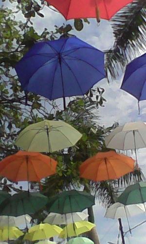 The Week On EyeEm Colourfull Umbrella Colourfull Life
