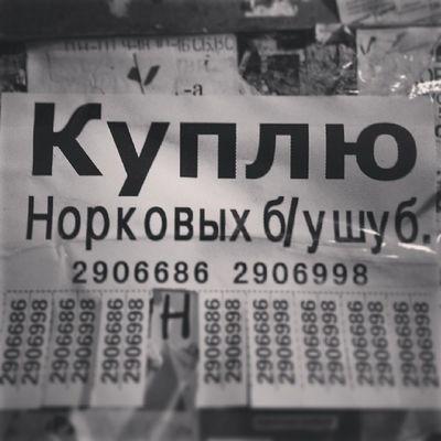 надписи  Владивосток