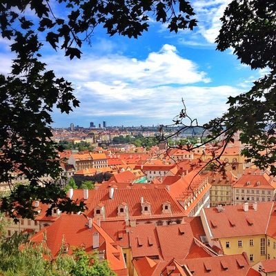Lovely #roofs of #Prague ☀️???☀️ as you cam see them from #Prague #castle ? Top_masters From_city Summer Pro_shooters Prague Igers_cz Castle Igerscz Iccity Czech Praguecastle Roofs Gang_family Allshots_ Ic_cities O2travel Printmyfeedhappydays Capture_today