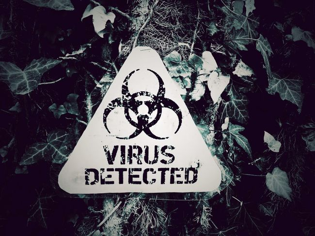 Virus Detected Text Communication Warning Sign Outdoors Day Leaf No People Tree Close-up Nature Virus Virus Attack
