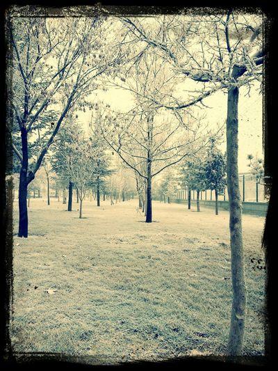 güzel ama soğuk :))