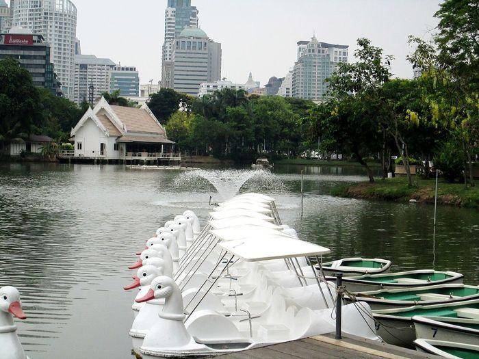 Sawasdee World. Relaxing Lumphini Park Veiw Enjoying Life Silhouettes Of A City Taking Photos Thailand_allshots EyeEm Thailand .