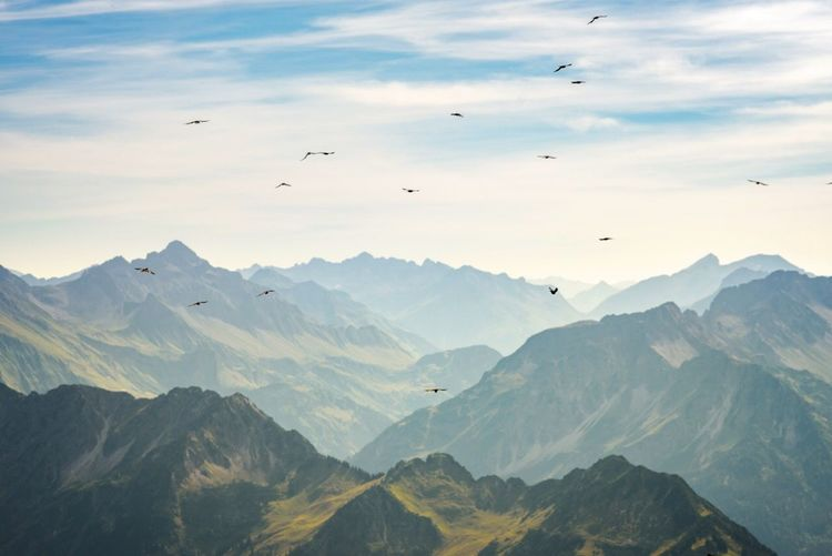 Tranquil view of birds flying above mountain ranges