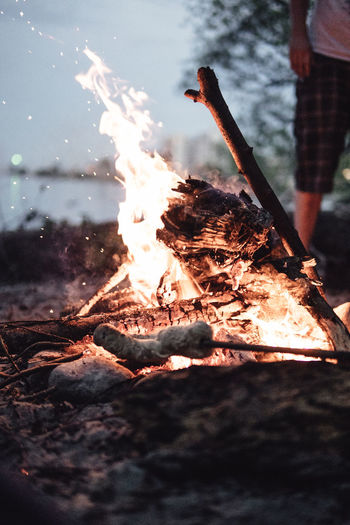 Evening campfire with friends Burning Fire Flame Fire - Natural Phenomenon Log Firewood Heat - Temperature Nature Wood Bonfire Wood - Material Motion Glowing Selective Focus Smoke - Physical Structure Close-up Campfire Ash Burnt Outdoors Friendship Friends