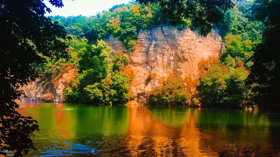 Green Color Traveling Wildlife Photography Nature_collection Tourist Destination Travel Destinations Wildlife & Nature Tree Plant Water Lake Growth Nature Beauty In Nature No People Tranquility Reflection Scenics - Nature Tranquil Scene Sky Outdoors Day Idyllic Orange Color Waterfront