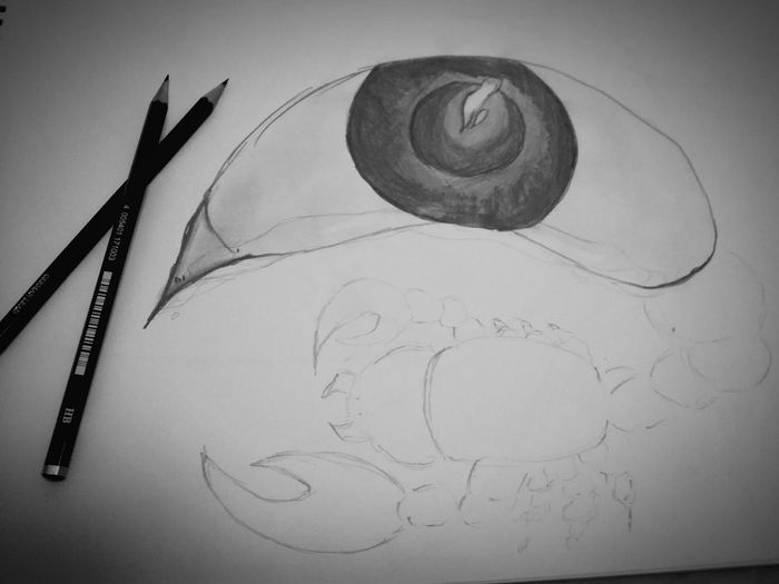 Tears will make a person Strong No People Indoors  Sketch Pad Close-up Day Tears Eye Speak Even When You Would Not Want Sadness Sketching ☺ Scorpion