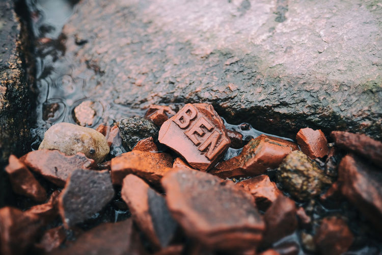 Ben? Selective Focus Close-up Day No People Damaged Nature Rock Outdoors Creek Tegel Fujifilm X-pro2 XF16mmF1.4 Fujilove Taking Photos Sverige Kungshamn EyeEm Best Shots Brick Dogwalk Back Mirrorless Fujicamera Rock - Object Textured  Weathered