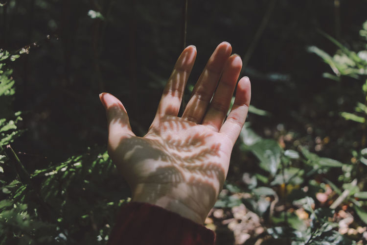 Close-up of hands with leaves shadow