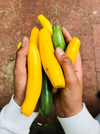 zucchini Healthy Eating Freshness Food White Color Sand Getting Inspired Children Hands Harvest Yield Yellow Green Summer Zucchini Human Hand Hand Human Body Part One Person Real People Food Food And Drink