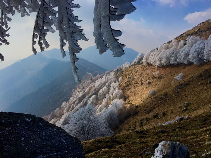 Frozen nature Mountain Beauty In Nature Cold Temperature Winter Sky Nature Snow Landscape Outdoors Tranquility Tree Land Environment Mountain Range Scenics - Nature
