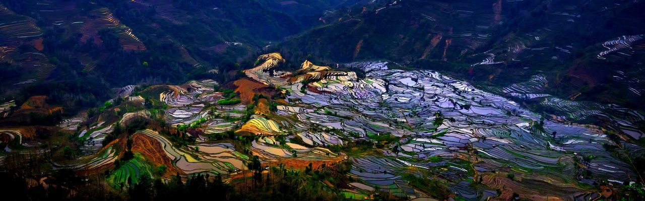 Terraced rice fields in Laohuzui Yuanyang County Laohuzui Nature Rice Paddy Sunlight Yuanyang Terraced Fields Abstract Animal Themes Animals In The Wild Beauty In Nature Close-up Day Mountain Mountain Range Nature No People Outdoors Rice - Cereal Plant Rice Field Rice Terrace Rice Texture Sunset Water Yuanyang