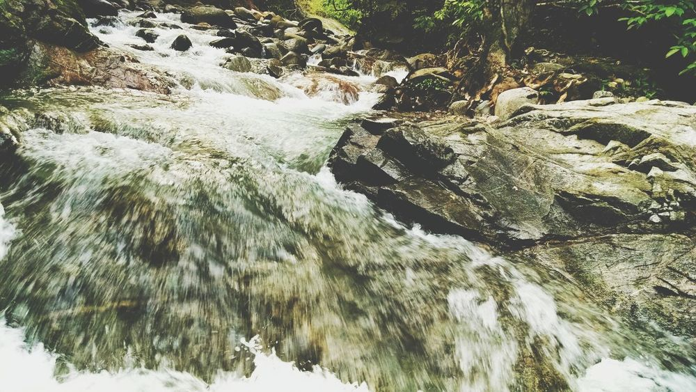 Water Fountain Water Nature Creek