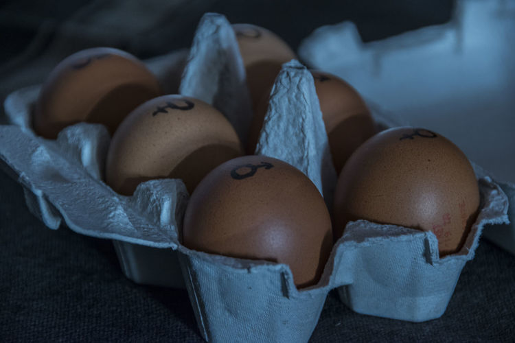 EyeEm Selects Egg Food Container Indoors  Brown Food And Drink High Angle View Freshness Still Life Raw Food Nature Healthy Eating Wellbeing Table Studio Shot Selective Focus Focus On Foreground