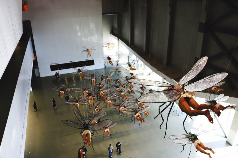 Animal Themes monsters Human Body Locust Head Lishan Exhibition Shanghai Museum Of Contemporary Art
