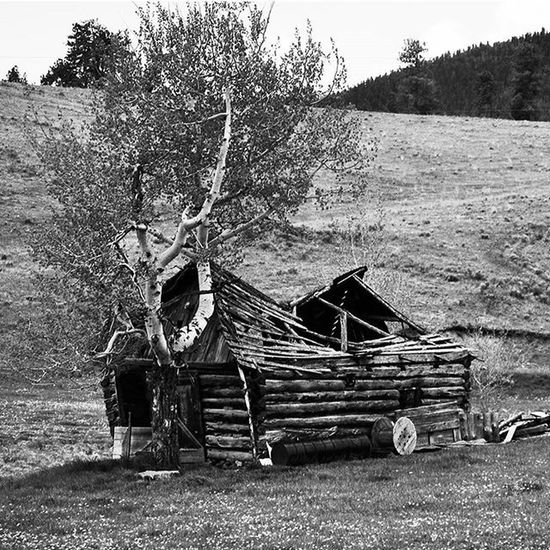 Barn. Farm Rural Old Rustic Bnw Blackandwhite Colorado Travel Wetmountainvalley Westcliffe Mountains Landscape Nikon D3300