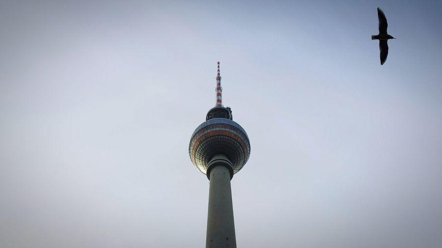 Berlin Berliner Ansichten Alexanderplatz Fernsehturm Looking Up Seeing The Sights Hidden Gems