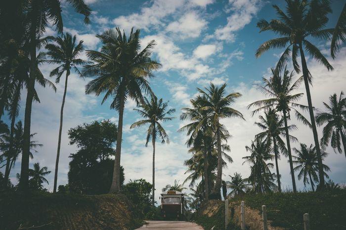 Finding New Frontiers Namaste ❤ Nature Phuket