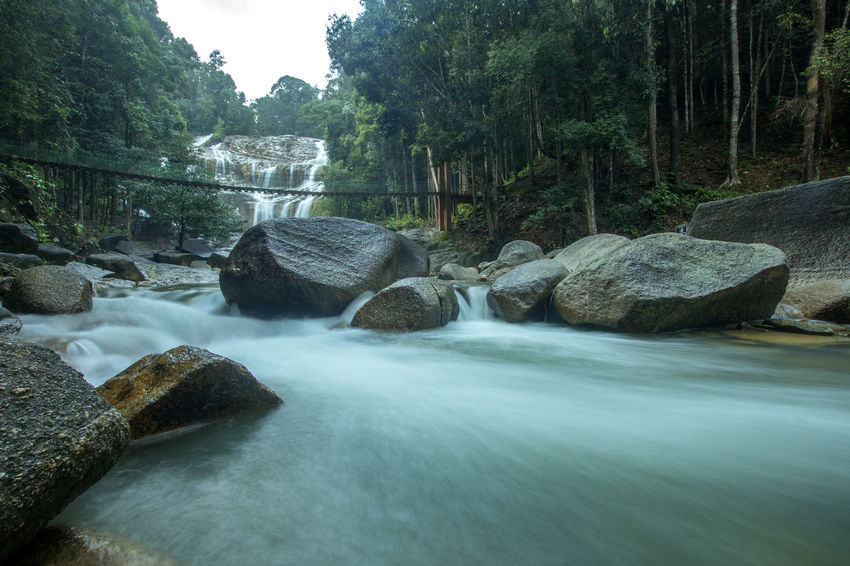 The scenery in the waterfall area in the tropical rainforest in Kuantan, Pahang, Malaysia.visible water secretion and noise Forest Blue Environment Grass Leaf Green Liquid Nature Scenery Tourism Cool Flowing Natural Rock Wave Aqua Beauty Cataract Day Drop Nature No People Outdoor Outdoors Stone Waterfall