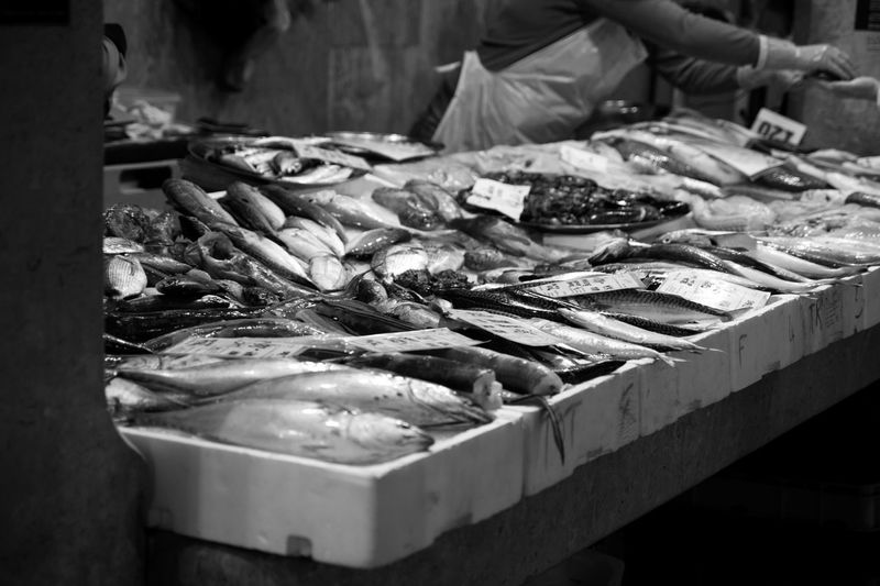 Vertebrate Seafood Fish Fish Market For Sale Animal Large Group Of Objects Market Food And Drink Food Indoors  Raw Food Choice High Angle View No People Sale