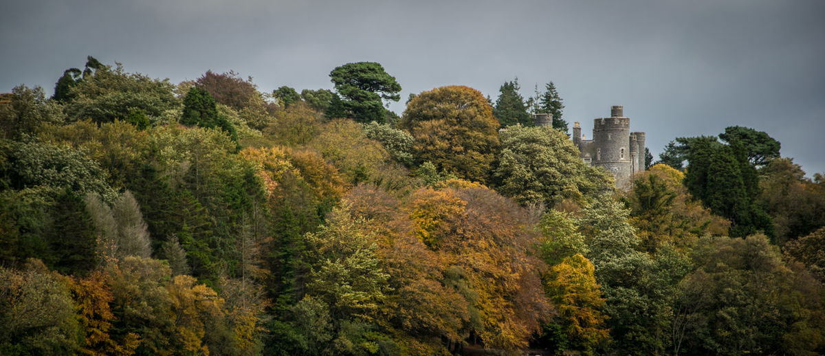A shot of Castlewellan Castle rising above the autumn tree line Autumn 2016 Autumn Colors Autumn Leaves Castle Castlewellan Castlewellan Forest Park Cloud Day Forest Growth NIKON D5300 No People Outdoors Panorama Sky Tranquility Tree Walk Walking Around First Eyeem Photo