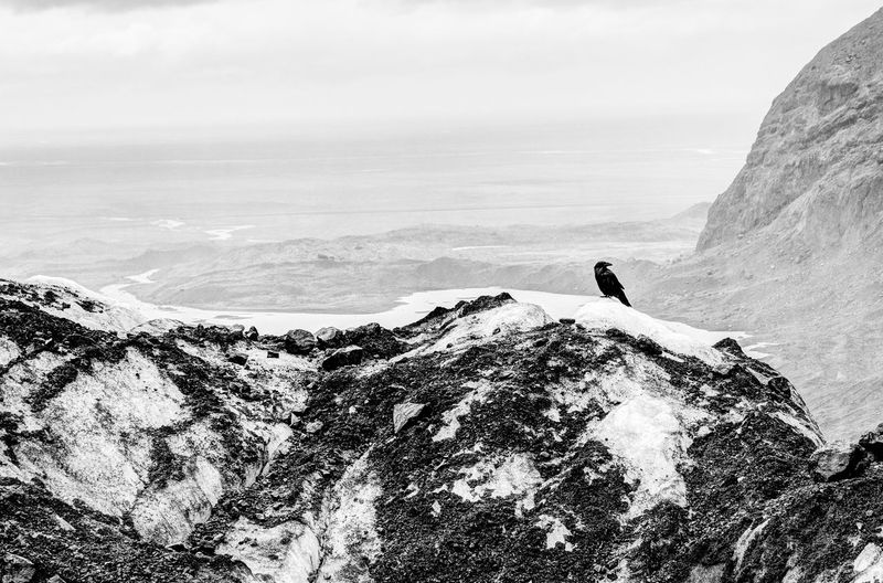 Iceland Iceland Memories Adventure Beauty In Nature Blackandwhite Cliff Climbing Day Extreme Sports Horizon Over Water Iceland Trip Iceland_collection Leisure Activity Lifestyles Mountain Nature One Person Outdoors People Real People Rock - Object Scenics Sky Tranquility