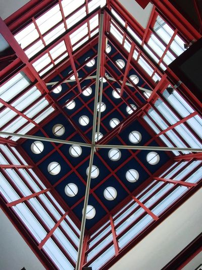 Roof Top Watching Upside Upsidedown