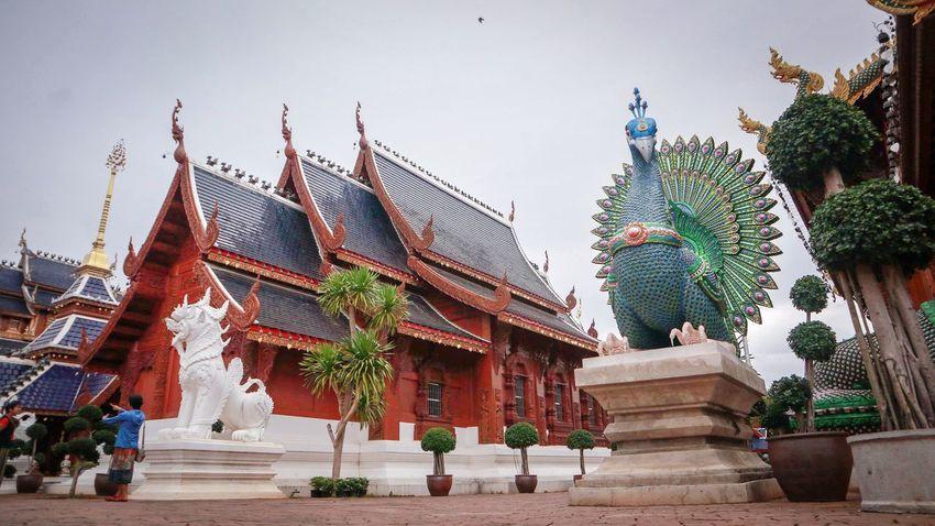 Buddha Image วัด พระ Buddha Statue Buddhist Temple TempleThailand Buddha Temple Thailand Thai วัดบ้านเด่น เชียงใหม่ WatBanDen Chengmai Chengmai Thailand City Statue
