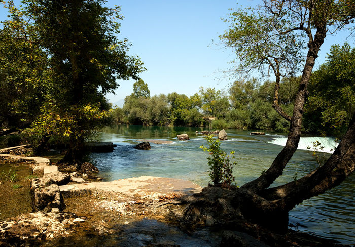 Manavgat Waterfall Flowing Water Manavgat River Manavgatşelalesi Tourist Attraction  Turkey Beauty In Nature Branch Environment Flora Light And Shadow Manavgat Manavgat Waterfall Nature Outdoors River Scenery Scenics Sky Tranquil Scene Tranquility Tree Water