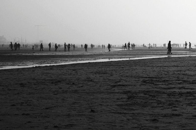 Blackandwhite Sea Light And Shadow Water Silhouette Sky Landscape Grass Low Tide Tide Surf Seascape Shore Coast