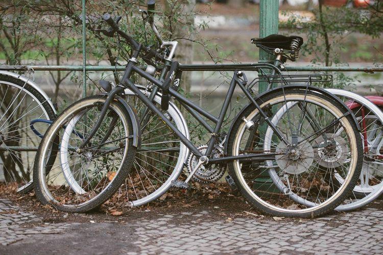 Bike Berlin Fahrrad Along The Way
