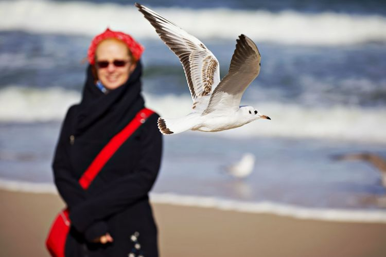 View of seagull flying by woman in background at beach