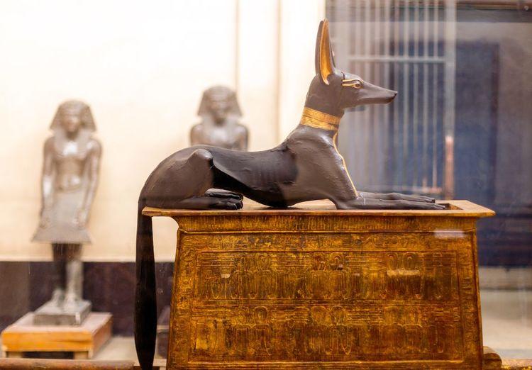 Anubis Statue In Museum
