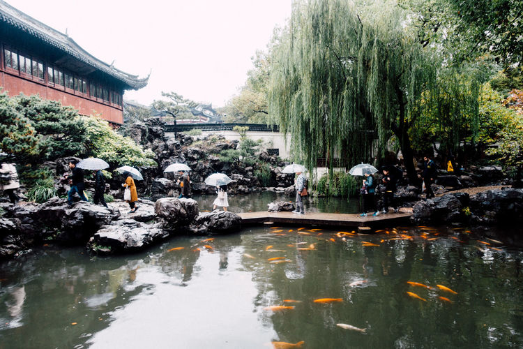 Yu Yuan Garden.... Water Nature Lake Outdoors Tree Plant Group Of People Architecture Reflection Built Structure Building Exterior Waterfront Large Group Of People Growth Rainy Days Umbrella