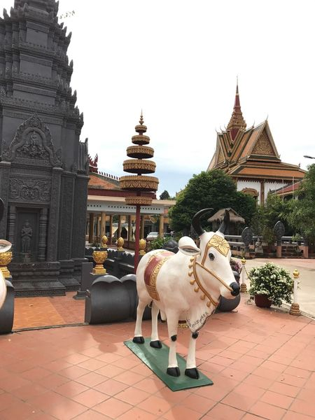 Architecture Religion Statue Sculpture One Animal Built Structure Dog History Building Exterior Place Of Worship Animal Themes Ancient Day Spirituality Travel Destinations Mammal No People Outdoors Pets King - Royal Person